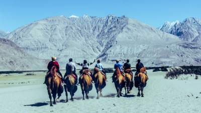 ENJOY BACTRIAN CAMEL RIDE – IN NUBRA VALLEY (LADAKH)
